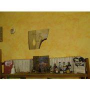 Cica család falikép